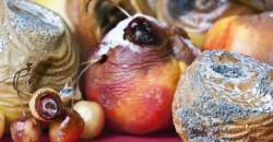 Čo spôsobujú niektoré potraviny v našom organizme?
