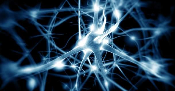 Vďaka nervovej sústave je nám umožnená duševná činnosť. Ako to funguje?