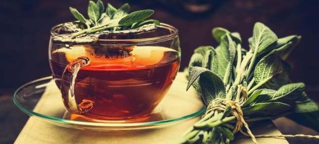 Šalvia s čajom