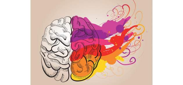 Kreatívna časť mozgu