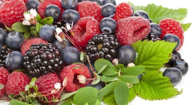lesné ovocie