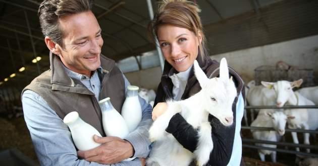 Objavte kozie mlieko