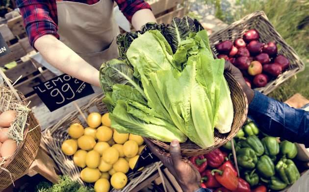 Farmár a bio potraviny