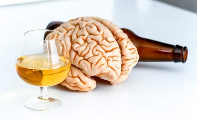Vplyv alkoholu na orgány