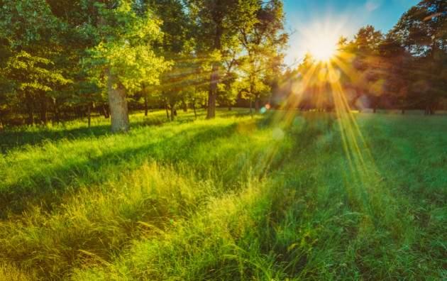 Slnko a príroda