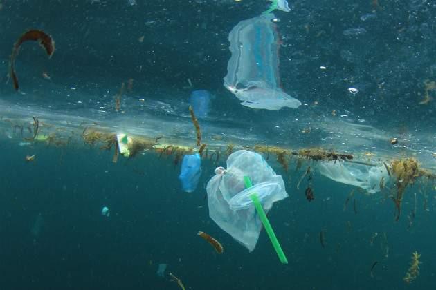 Znečistenie plastami