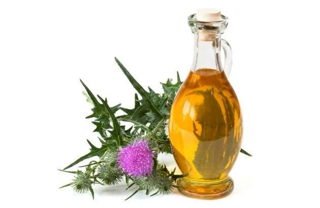 Pestrec mariánsky - olej