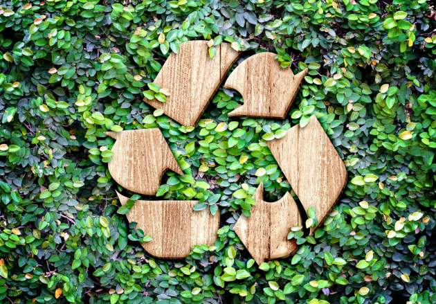 reckylacia a ekologicka kozmetika