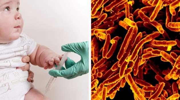 nová vakcína proti tuberkulóze