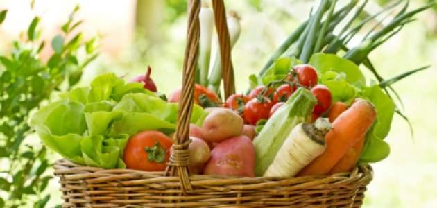 Košík plný zeleniny