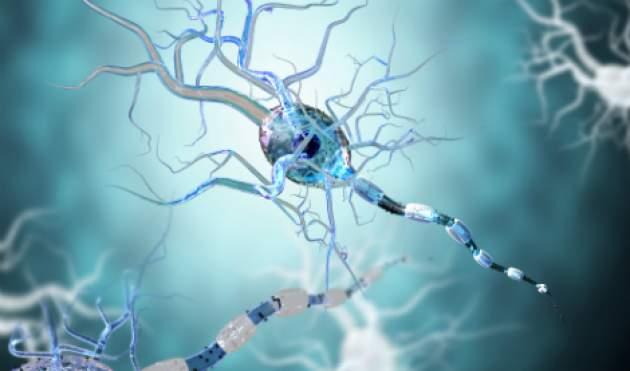 Poškodené nervové vlákna