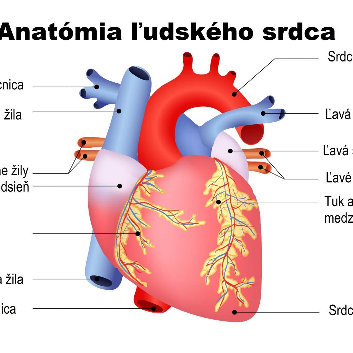 poruchy srdce