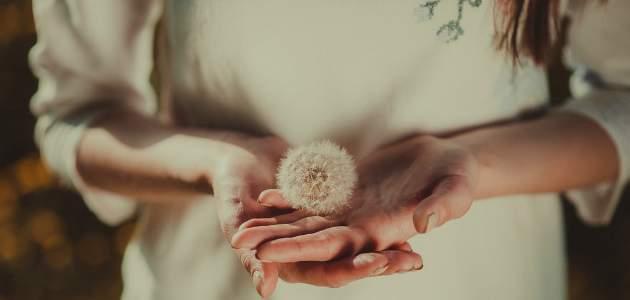 Pokora je znakom vnútornej zrelosti a sily: ako ju dosiahnuť?