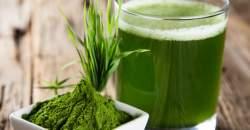 Zelený jačmeň dokonale prečistí a ozdraví organizmus