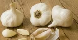 4 zázračné účinky: Ako vplýva cesnak na plod v maternici?
