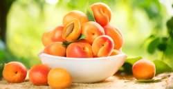 Chýba vám v tele vitamín A nevyhnutný pre zdravie pokožky? Jedzte marhule.