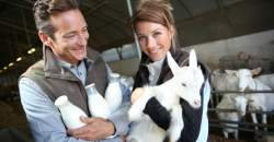 Objavte kozie mlieko: je vhodné aj pre ľudí s laktózovou intoleranciou