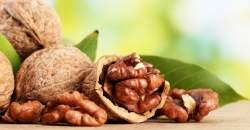 Orechy ako skvelý zdroj zdravých tukov