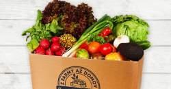 Veľká jesenná SÚŤAŽ so Svetom Bedničiek o farmárske potraviny na celý týždeň s doručením až domov!