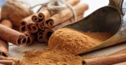 Škorica - pre chuť i zdravie