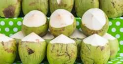 """5 hlavných dôvodov, prečo """"áno"""" pri výbere kokosovej vody"""