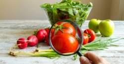 GMO – je všade a ani o tom neviete