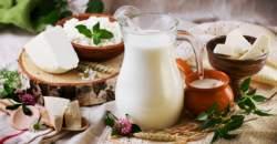 Analýza mliečnych výrobkov: naučte sa v nich orientovať (1. časť)