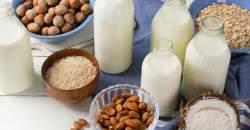 Rastlinné mlieka sú bohaté na vitamíny a minerály: vyskúšajte si pripraviť vlastné