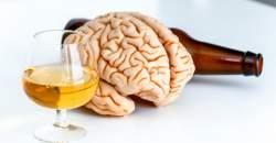 Takto pôsobí alkohol pri pravidelnej a častej konzumácii na orgány