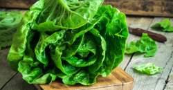 Hlávkový šalát: prečo by nemal chýbať vo vašom jedálničku?