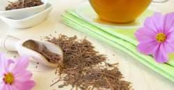 Lapacho čaj - pomôže pri chudnutí, detoxikácii i chudokrvnosti