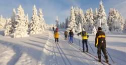 Bežkovanie: ideálny zimný kardio tréning
