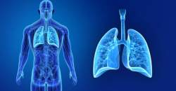 Zápal pľúc (pneumónia)