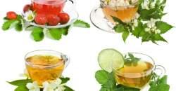 Prečistenie krvi prírodnou cestou: ktoré bylinky a potraviny sú ideálne?