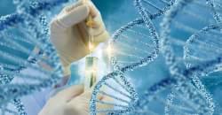 Unikátny test DNA zo slín odhalí riziko vážnych ochorení
