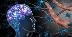 Svetový deň sklerózy multiplex: toto sú podujatia, vďaka ktorým zistíte o zákernom ochorení viac