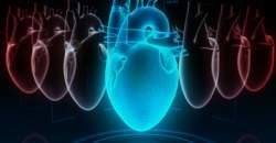 Poznajte svoj systolický i diastolický tlak a chráňte si zdravie srdca!