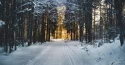 Ochrana organizmu v zime – vyhnite sa tak týmto chorobám!
