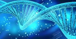 DNA a génové inžinierstvo