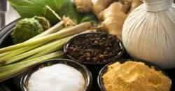 Detoxikácia, redukcia hmotnosti a uvoľnenie stresu ayurvédou