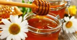 Med a zdravá výživa