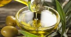 Olivový olej je elixírom života. Nie však každý.