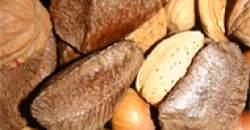 Energetická a biologická hodnota potravín - sacharidy