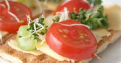 Význam pojmov z oblasti potravín a výživy