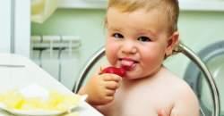 Chute sú rôzne – ako vznikajú ich preferencie?