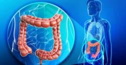 Element Kov - pľúca, hrubé črevo