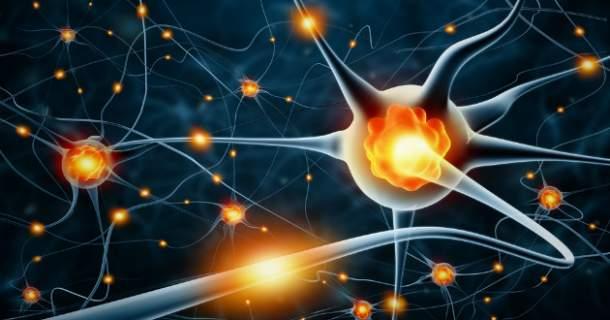 Hormóny v našom tele: poznáte ich funkciu? (1. časť)