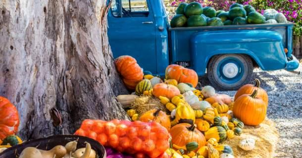 Dva veľké problémy nášho potravinárstva: zeleninoví veksláci a diskrimácia slovenského pestovateľa