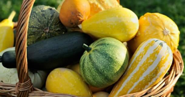 Tekvica patrí k jeseni: poznáte hlavné druhy?