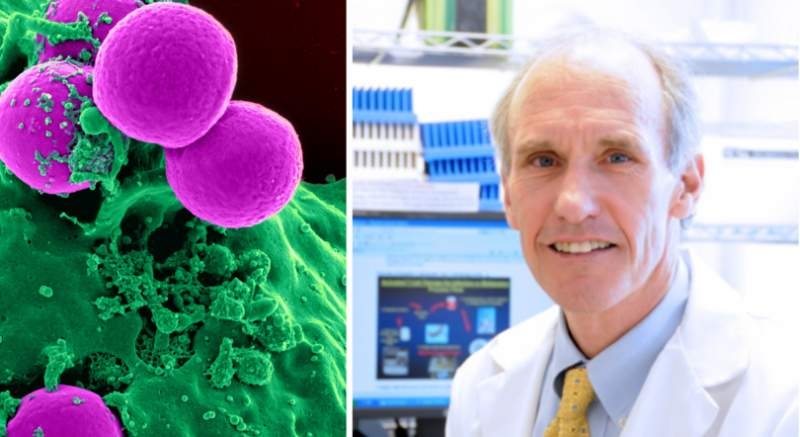 Biele krvinky ako zbraň proti rakovine? V prelomovom experimente vedci upravili ich dedičnú informáciu a liečili pacientov s rakovinou v pokročilom štádiu